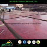 Madera contrachapada Shuttering del bambú para la construcción