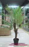 ヤシの木Ap017kg-180cmの人工的なプラント