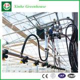 야채를 위한 PE Film/Po Film/PVC 필름 온실 /Green 집 또는 온실 또는