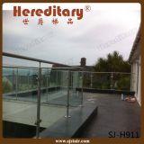 Balustrade de van uitstekende kwaliteit van het Glas voor de Omheining van het Zwembad (sj-3029)