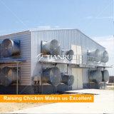 Chambre de poulet en acier préfabriquée de coût bas