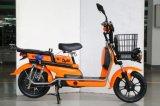 Carga E-Scooter batería de litio Utilidad de 800W con una fuerte capacidad de cargamento