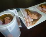 화학품을%s 주문 인쇄 PVC 레이블