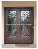 Portes décoratives de fer de garantie de position extérieure