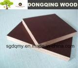 La película de Brown hizo frente a Sr. Glue Shuttering Plywood de la madera contrachapada