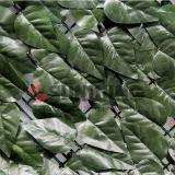Haie artificielle de buis de jardin d'usines de LIERRE de barrière en plastique de feuille