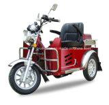 [70/110كّ] يعاق درّاجة ثلاثية/ثلاثة عجلة درّاجة ناريّة ([دتر-2])
