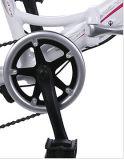 Облегченный велосипед складчатости сплава с Shimano Derailleur и сдвигателем