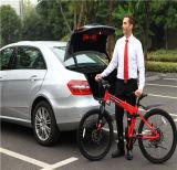 Elektrischer Fahrrad-Motor 240W 72V, e-Fahrrad-elektrisches Fahrrad
