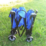 Vagão de múltiplos propósitos ao ar livre do metal do carro da ferramenta de dobradura para miúdos