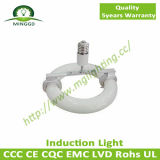 40W~80W Environmental Round LVD Induction Light mit 5 Years Warranty