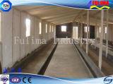 가축 장비 강철 구조물 돼지 또는 암소 집 (FLM-F-019)