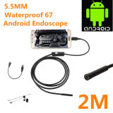 Câmera de tubo Android HD720p 6 LED 5.5mm Lens 2m Waterproof Inspection Borescope