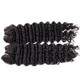 8A onda do rei Vigin Cabelo Brasileiro Profundo do Weave não processado Curly apertado do cabelo humano de 3 pacotes pacotes Curly profundos do cabelo do Virgin