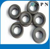 Magnete sinterizzato permanente industriale personalizzato del ferrito per i motori