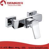 Faucet do chuveiro do punho do corpo de bronze da alta qualidade único (ZS41302)