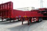 13 van de Lichtgewicht (5.5ton) van de Staaf van de Plaat meters Vrachtwagen van het Vervoer