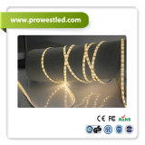 Replace SMD3528 Single White LED Strip LED Neon Flex에 경제적인 DC12V 60*SMD2835