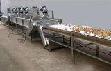 Maquinaria que se lava usada de gran tamaño del cepillo industrial de la fruta y verdura