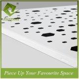 Décoration en aluminium perforative Clip-dans la tuile de plafond