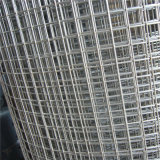 Galvanized/PVC beschichteter geschweißter Maschendraht für Sicherheit/Aufbau