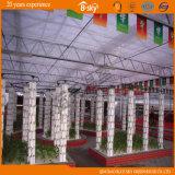 De duurzame Serre van de multi-Spanwijdte van de Raad van het Polycarbonaat