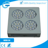 LED Grow Light for Hydroponic Lettuce