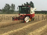 Big riz Reaper pour Dry Land