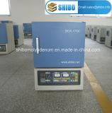 Horno de mufla 1700 de la calefacción de Electrice 64L