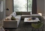 بيتيّة فندق غرفة نوم يعيش غرفة حديثة بناء جلد أريكة [شنس] منزل أثاث لازم ([س102])
