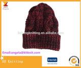 高品質の新式の低価格の編まれた帽子の冬の帽子の空想のステッチの帽子