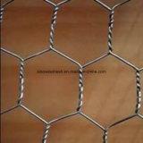 良質の熱い販売の六角形ワイヤー網