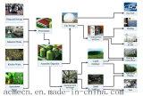 De Apparatuur van de Ontzwaveling van het Biogas van de Goede Kwaliteit van China