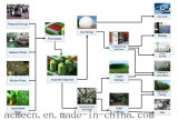 China-gute Qualitätsbiogas-Entschwefelung-Gerät