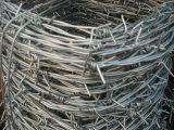 Elektro en Hete Ondergedompelde Hete Ondergedompelde Barbe Wire (gespecialiseerde fabrikant)