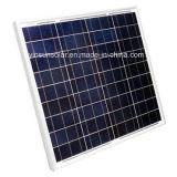 comitato solare 250W con approvazione del Ce e di iso (YSP250-12P)