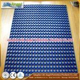 De blauwe Rode Zwarte RubberMat van het Gras van de Bescherming van de Mat van de Mat van de Kleur Rubber Holle Rubber