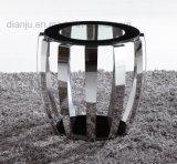 Tableau en verre spécial de sofa d'acier inoxydable de meubles de modèle premier (CT052L)