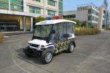 4 touristisches besichtigenauto des Rad-48V5kw für das Fahren ohne Lizenz