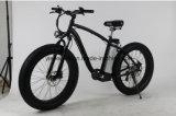Myatu는 4.0 지방질 타이어를 가진 자전거 함 뚱뚱한 자전거를 자동화했다