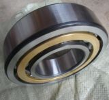Roulement à rouleaux cylindrique Ncf2305 SKF (NCF2301, NCF2303, NCF2306, NCF2308)