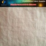 テフロン衣服のためのナイロンTaslonの小切手ファブリック、ナイロンファブリック、(LY-R0109)