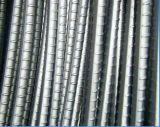 Vite del filetto di alta qualità di rinforzo intorno al tondo per cemento armato d'acciaio in azione