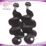 Weave peruano do cabelo do Virgin real da qualidade superior de Fbl