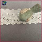 Neue Stickerei-Baumwollspitze-Baumwollgewebe-Spitze