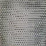 Гальванизированное плетение провода/гальванизированный экран окна москита /Iron скрининга насекомого