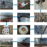 El panel gemelo del material para techos del policarbonato del garage de la hoja de la depresión del policarbonato de la pared