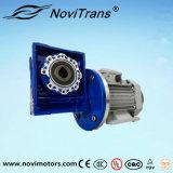 motori sincroni flessibili 3kw con il rallentatore (YFM-100/D)