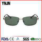 Lunettes de lunettes de soleil lunettes polarisées carrées de haute qualité (YJ-F8506)