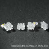 Corchete de cerámica del nuevo progreso ortodóntico dental del corchete